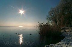 roge-landschaft-natur-041.JPG