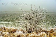 roge-landschaft-natur-042.JPG