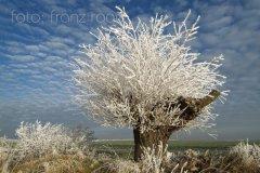 roge-landschaft-natur-046.JPG