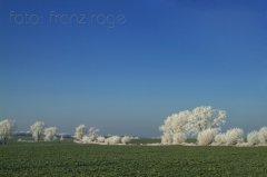 roge-landschaft-natur-049.JPG