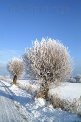 roge-landschaft-natur-052.JPG