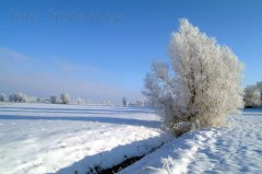 roge-landschaft-natur-053.JPG