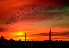 roge-landschaft-natur-060.JPG