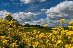 roge-landschaft-natur-197.jpg