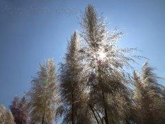 roge-landschaft-natur-207.jpg