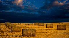 roge-landschaft-natur-218.jpg