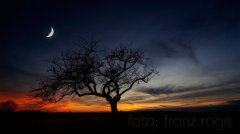 roge-landschaft-natur-221.jpg