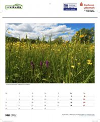 roge-kalender-090.JPG