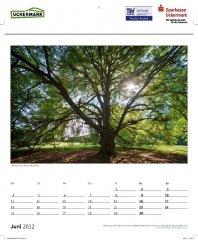 roge-kalender-091.JPG